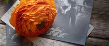 Cartes postales de vacances, connaissez-vous leur histoire?