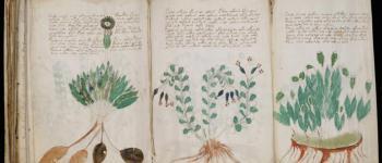 Le manuscrit de Voynich, un véritable casse-tête